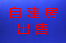 出售:良庆区大沙田地铁口附近1-7楼467平自建房