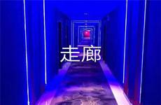 广西大学鲁班路地铁口全新精装电竞酒店及月子中心招承包