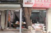 西乡塘区广西财经学院旁陈西村60平快递服务站整体转让
